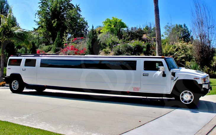 Experience The Ride of Luxury in a Limo