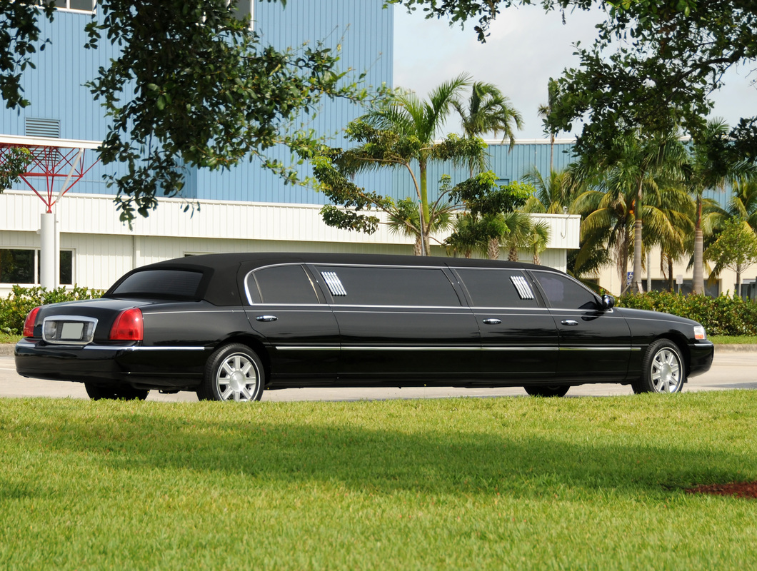 Limousine Services Have The Quality Professionals With Them
